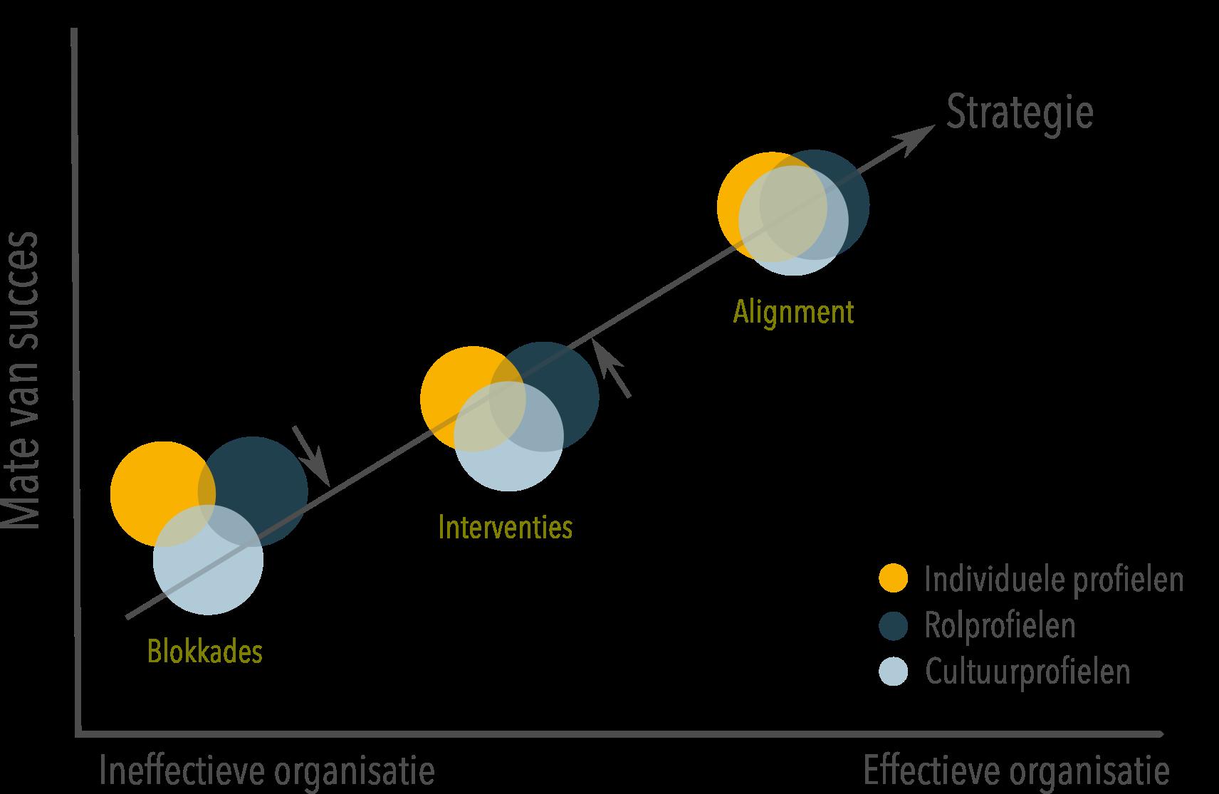Model organisatieontwikkeling